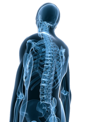 Treatments for Chronic Back Pain